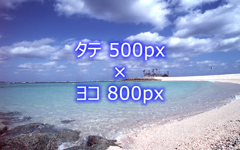 sample_500x800